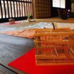 世界に一つ!伊丹の秋の風物詩「鳴く虫と郷町」が今年も始まる!